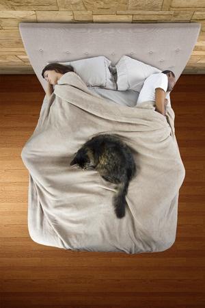 Dormir avec son chat = insomnie !