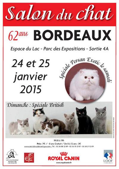 Exposition de chat à Bordeaux le 24 et 25 janvier 2015.