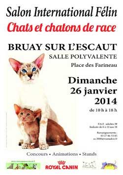 L'affiche du Salon chat Bruay-sur-l'Escaut 2014
