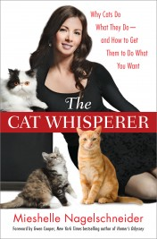 Pourquoi le chat fait ce qu'il fait et comment faire pour qu'il fasse ce que vous voulez