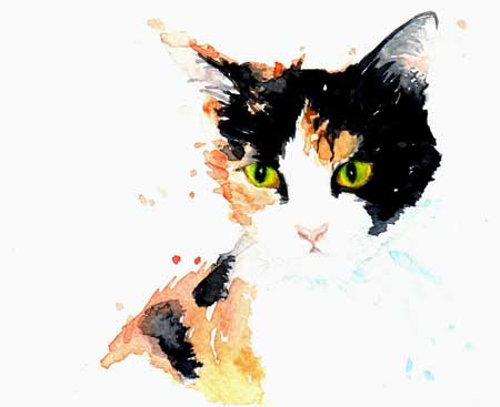 Kathleen Wong Art : portraits des chats de Hong Kong