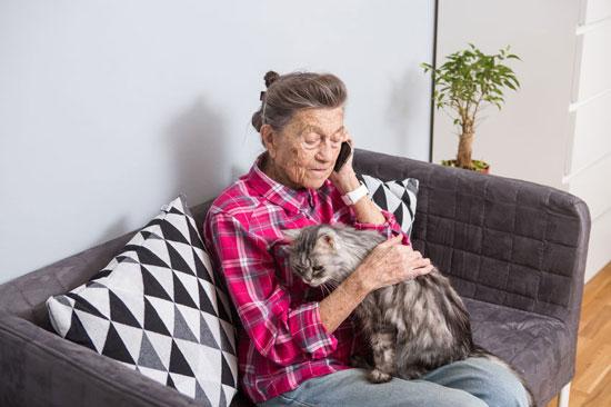 Le chat possèderait en effet de véritables pouvoirs thérapeutiques.