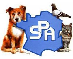 La SPA est à la recherche de son (sa) prochain (e) président (e)