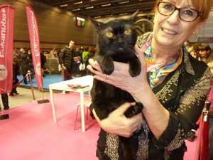 Les chats au salon de l 39 agriculture 2014 - Salon de l agriculture 2014 dates ...