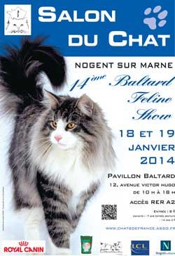 salon du chat 2014 nogent sur marne le baltard feline show