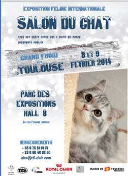 Salon Du Chat Toulouse