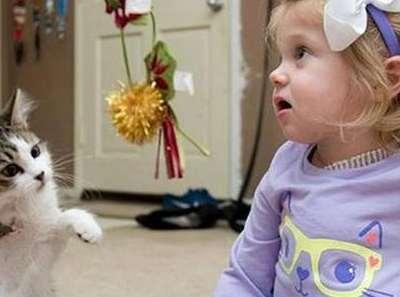 Un chaton à trois pattes pour une petite fille amputée d'un bras.