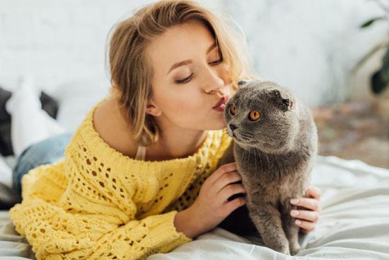 Mieux communiquer avec son chat ?
