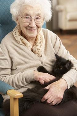 Personne âgée et un chat dans un hospice