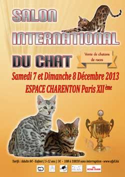 L'affiche du 5ème Salon International du Chat de Paris XIIème 2013