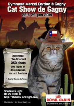 Affiche de l'Exposition féline à Cagny (93220) les 28 et 29 juin 2014