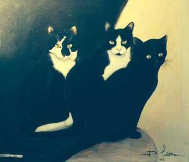 Brocante organis e en faveur des chats dans l 39 eure pacy sur eure les 8 9 10 mai - Brocante dans l eure ...