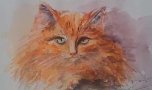 Une amoureuse des chats qui les immortalise en aquarelle