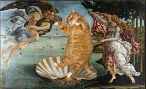 Le chat Zarathoustra, l'art ... c'est du lard !
