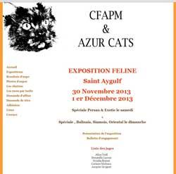 Affiche de l'exposition de chats à Saint Aygulf  30 novembre et 1 décembre 2013