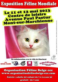 Exposition mondiale de chats à Mont sur Marchienne les 11 et 12 mai 2013