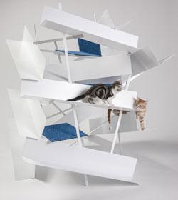 FixNations lance l'architecture pour chats...