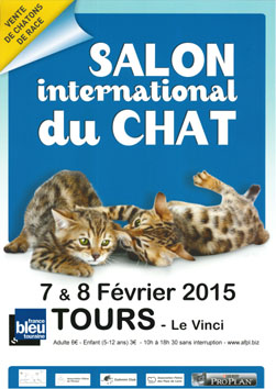 Le 7 et 8 février 2015 se tient le salon du chat de Tours