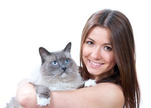 Notre ami le chat pourrait peut être sauver la sécurité sociale et même la France