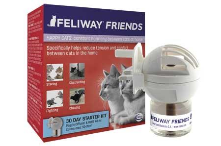 Réussir la cohabitation entre chats hostiles : La solution « Feliway Friends ».