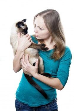 L'intonation de la voix  est importante pour parler à son chat.