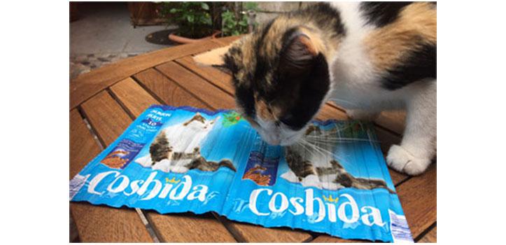 Un moyen infaillible pour faire avaler ses médicaments à son chat.
