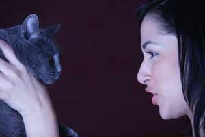 Parler à son chat  : le ton c'est bon...