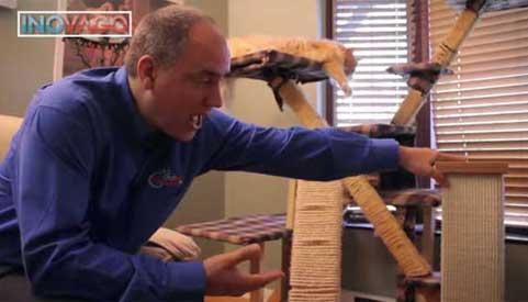 une vid o qui explique comment emp cher son chat de faire ses griffes sur vos meubles. Black Bedroom Furniture Sets. Home Design Ideas