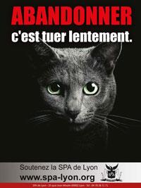 Affiche de la SPA de Lyon