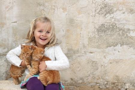 Un chaton n'est pas un jouet