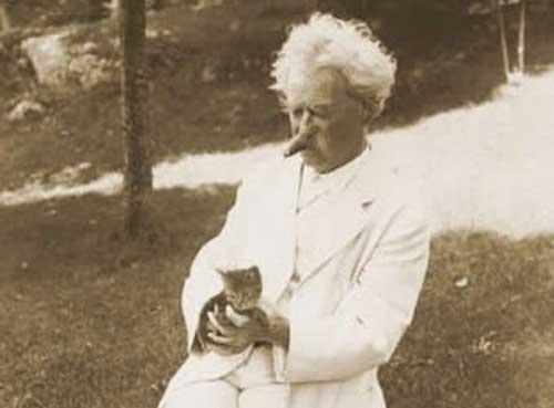 Mark Twain : « L'homme est le descendant dévalué du chat »