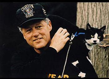 L'histoire de Socks le chat de Bill Clinton et de sa famille à la Maison Blanche