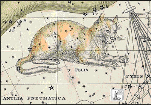 la constellation du chat de Jérôme de Lalande.