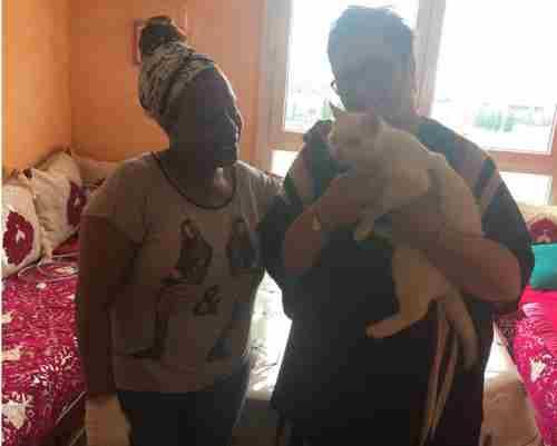 Bravo à vous le chaton pour qui nous avions lancé un appel vient d'être adopté.