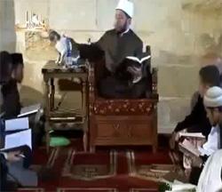 LE CHAT DANS L ISLAM