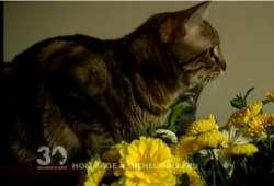 Le monde des amis des animaux est en deuil, Michel Galabru nous a quittés.