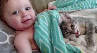 Vidéo qui démontre que la présence d'un animal est  importante pour un enfant.
